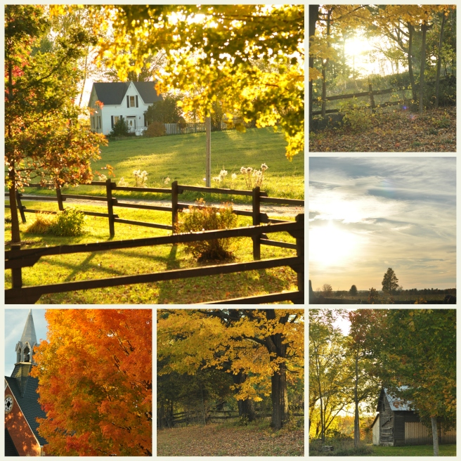 Collage_Walk in Middleville